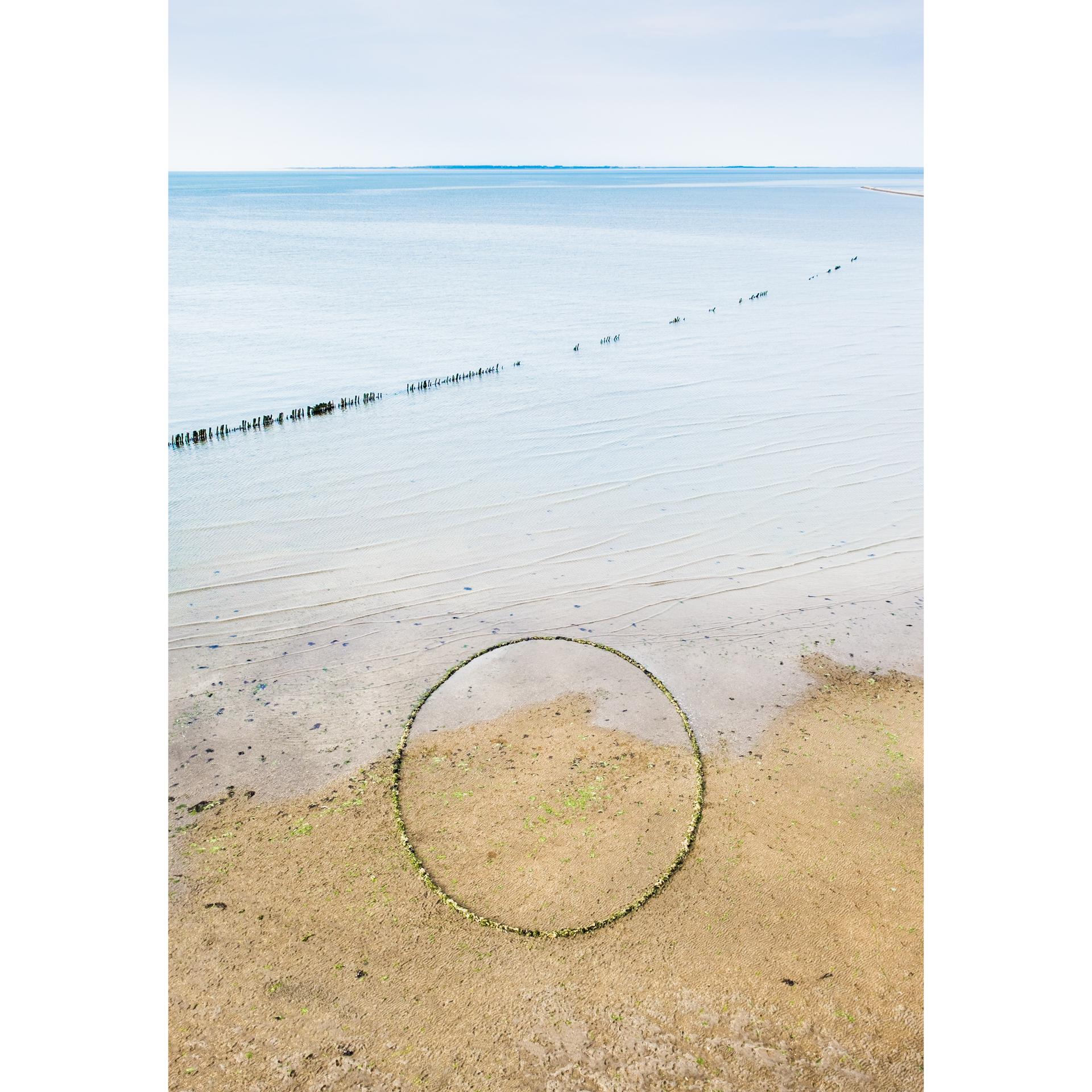 Zeewier cirkel